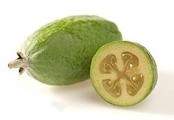 250px-Feijoa_HortResearch[1]