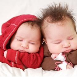 Как зачать двойню мальчиков или девочек - повышение
